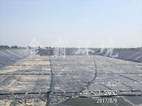 商水牧原沼液池储存池盖膜项目